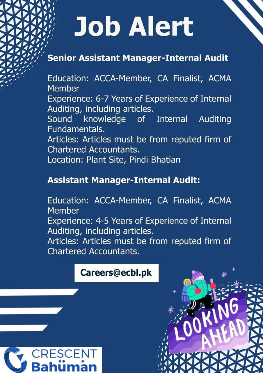 internal audit job senior am